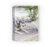 A mature dog and a puppy play in the yard  Spiral Notebook