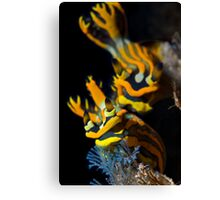 Nudi Pair Canvas Print
