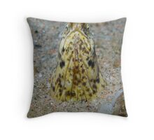 Snake Eel Throw Pillow