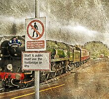 Steam Loco 'Braunton' arriving during a rainstorm by dmacwill