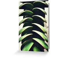 Exploring surfaces - Hebe plant Greeting Card