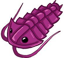 Purple Trilobite Photographic Print