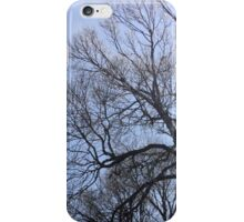 Trees in the sky iPhone Case/Skin