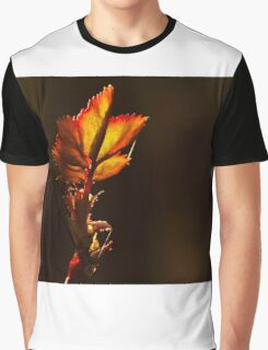 backlit leave during sunset  Graphic T-Shirt