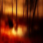 THE GHOST IN THE FOREST DO YOU SEE HIM by leonie7