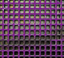 Purple Screen by Gary Conner