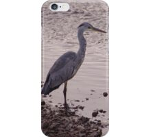 Heron and Grey Water iPhone Case/Skin