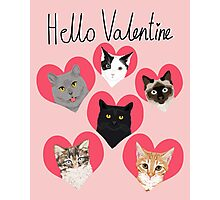 Cats valentines day cute gift for cat lady funny kitten hearts lovely pets Photographic Print