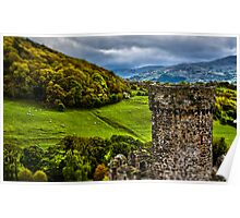 Conway North wales toy sheep Poster