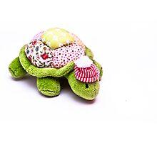Toy Tortoise Photographic Print