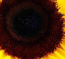 Simple Sunflower Sticker