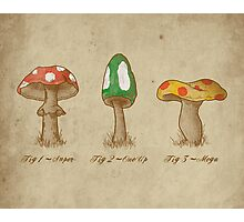 Mario Mycology Photographic Print