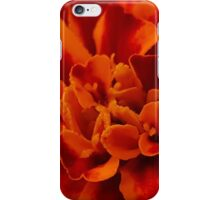 Last Begonia of the Year iPhone Case/Skin