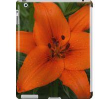 Hot Orange Lily  iPad Case/Skin