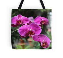 Orchids from Washington DC Tote Bag