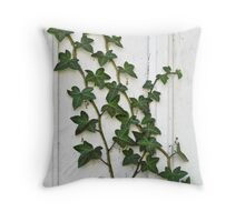 Ivy growing up a wall Throw Pillow