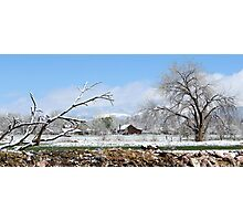Spring snowstorm in the mountains Photographic Print