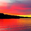 Lake Havasu reds by Christine Ford