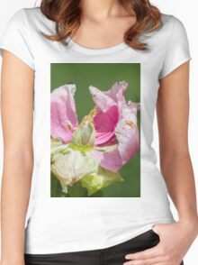 dried peony in the garden Women's Fitted Scoop T-Shirt