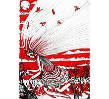 the bird gatherer (red ink) Photographic Print