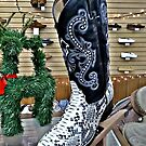 Snakeskin Boots by Jane Neill-Hancock