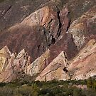 Salta Landscape VI by DianaC