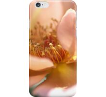 Pink with a Golden Touch Rose iPhone Case/Skin