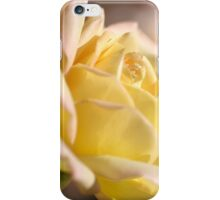 Romance the Rose iPhone Case/Skin