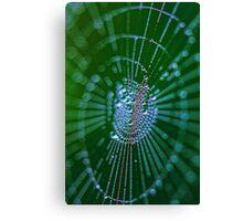 Magical web Canvas Print