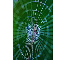 Magical web Photographic Print