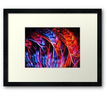 Summer Hyacinths Framed Print
