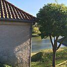 A House and a Tree Standing Still by HeklaHekla