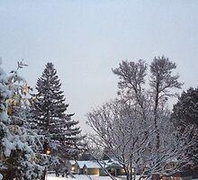 Winter Morning Snow Scene by silverdragon