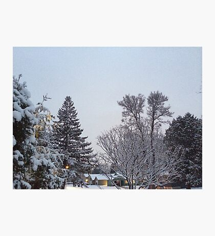 Winter Morning Snow Scene Photographic Print
