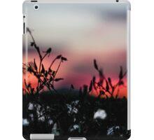 Seattle Cotton (small town) iPad Case/Skin