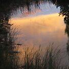 Grassy pond at sunset...Utah by Christine Ford