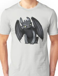 How To Train Your Dragon 6 Unisex T-Shirt