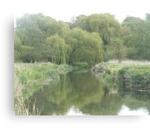 River with willow trees Canvas Print