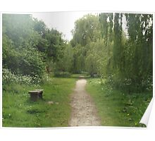 Path leading to willow Poster