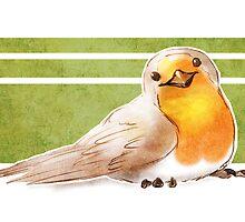 Robin by SUIamena