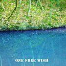Wishing-Pond VRS2 by vivendulies