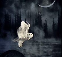 The owl and her mystical moon by Heather King