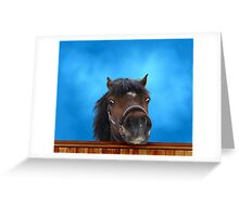 Pony, cheeky head study. Greeting Card