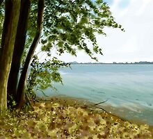 Sandusky Bay by SRowe Art
