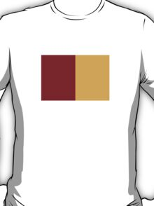 Flag of Rome, Italy  T-Shirt