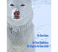 The Snow Queen - Text Version Photographic Print