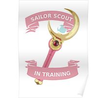Sailor scout in training Poster