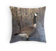 Goose walking in water Throw Pillow
