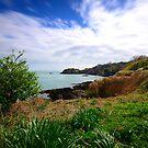 Saie Bay by Mark Bowden