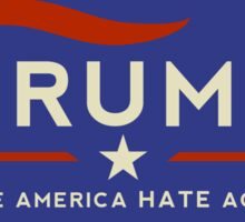 Donald: Make America Hate Again!  Sticker